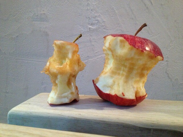Can Rabbits Eat Apple Cores