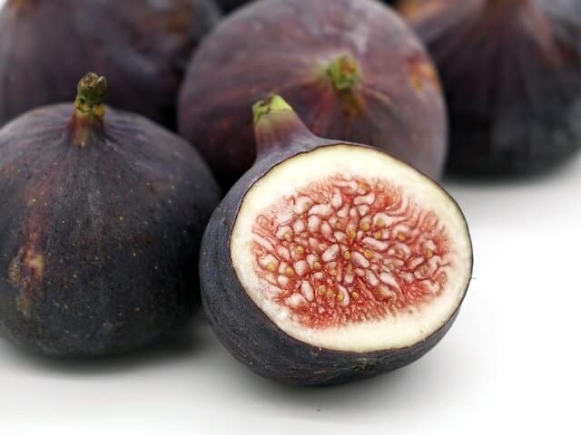 Can Rabbits Eat Figs